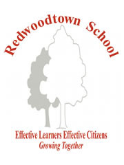 Professional Service Provider Redwoodtown School